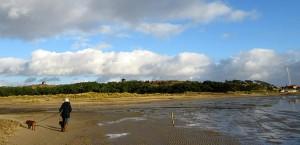 Terschelling - het Groene Strand, december 2014