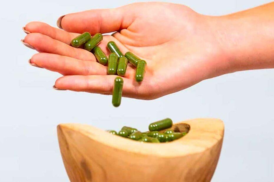 Is plankton eten schadelijk voor je gezondheid?